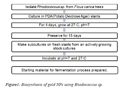biomedical-pharmaceutical-Biosynthesis-gold