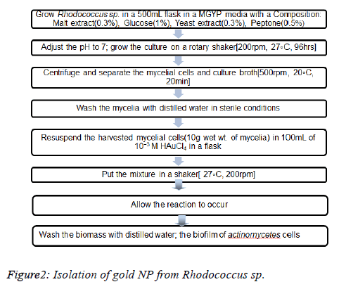 biomedical-pharmaceutical-Isolation-gold